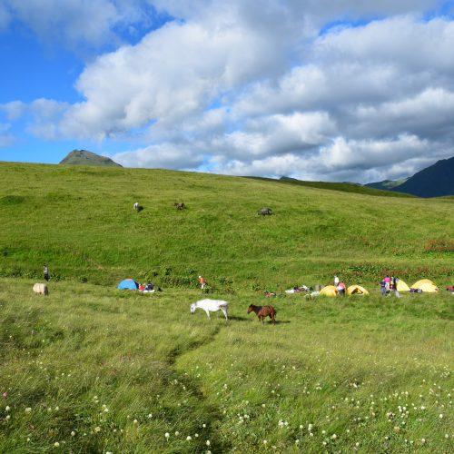 Camp during trekking tour in Tusheti