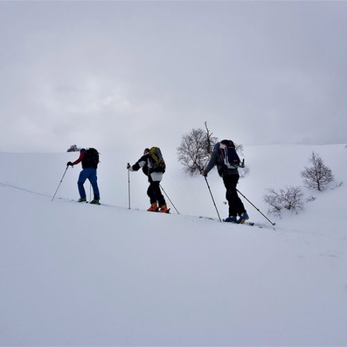 Ski touring guide
